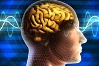 Hati-hati, Virus Corona  Bisa Berdampak ke Otak