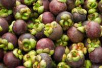 Berkat Program Kementan, Ekspor Komoditas Pertanian Asal Sumbar Meningkat
