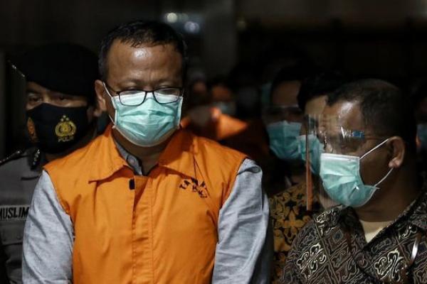 Menteri Kelautan dan Perikanan Edhy Prabowo memakai rompi orange ditetapkan sebagai tersangka suap ekspor benur lobster dan langsung ditahan. Foto: cnnind
