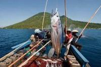Pembeli Luar Negeri Makin Kritis Terhadap Produk Perikanan Indonesia