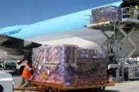 Garuda Optimalkan Bisnis Logistik Ekspor