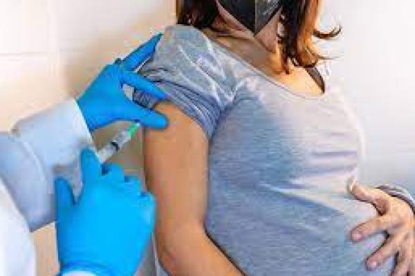 Ilustrasi. Vaksinasi ibu hamil (foto: halodoc.com)