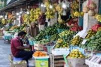 Konsumsi Buah Masyarakat Indonesia 88,5 Gram Per Hari, Jauh Dibawah Rekomendasi WHO