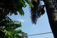 Sebagian Besar Wilayah Indonesia Berawan