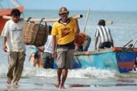 BMKG Ingatkan Nelayan Potensi Gelombang Tinggi dan Angin Kencang