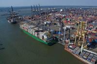 Bantu Peningkatan Ekspor,  Ditjen Hubla Berencana Buat Indonesian SEA