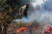 WHO: Aksi Iklim di COP26 Dapat Selamatkan Jutaan Nyawa